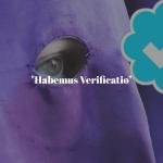 twitter rrss Hermandades el foro cofrade semana santa opinion colaboracion beitavg