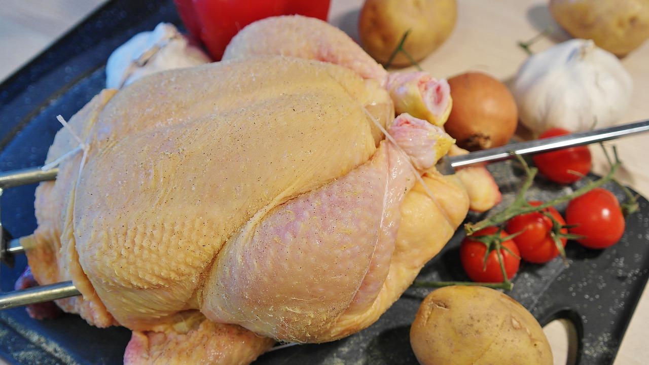 pollo relatos cortos beitavg