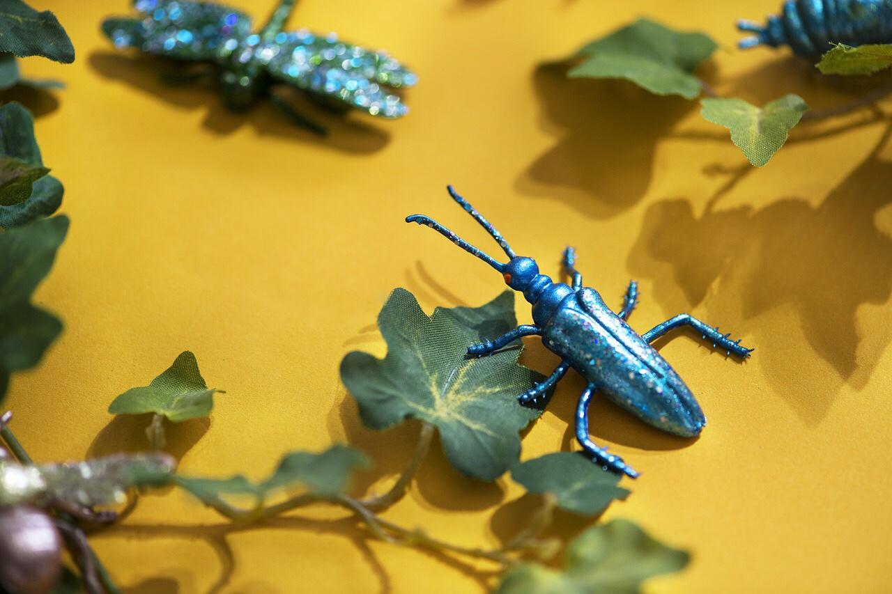 Cucarachas relatos cortos micro relatos
